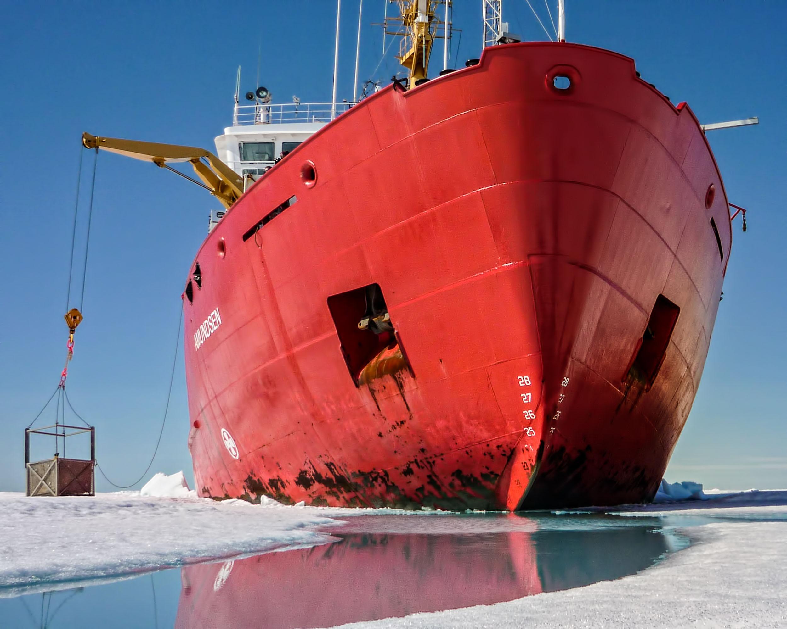 Amundsen Science COVID-19 Statement
